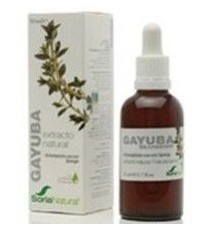 Extracto Gayuba - 50ml - Soria Natural