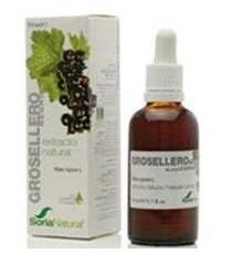 Extracto Grosellero Negro - 50ml - Soria Natural